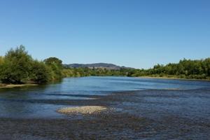 Ruamahanga River Wairarapa Trout Fishery