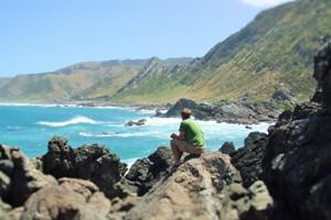 View at Cape Palliser