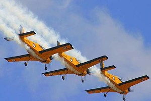 Wings over Wairarapa Aviation event